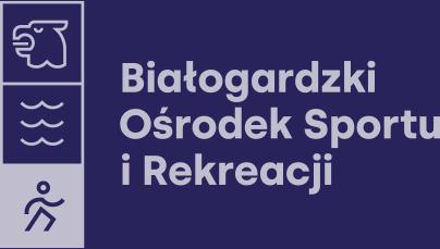 BOSiR Logo